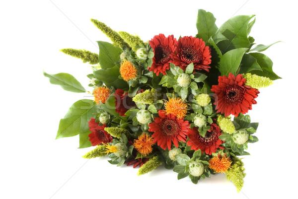Köteg virágok piros narancs Stock fotó © ivonnewierink