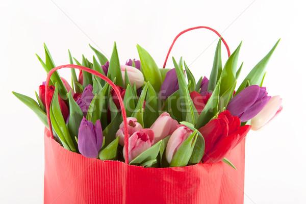 カラフル チューリップ ピンク 紫色 赤 花 ストックフォト © ivonnewierink