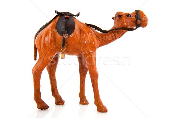 Teve állat izolált miniatűr Stock fotó © ivonnewierink