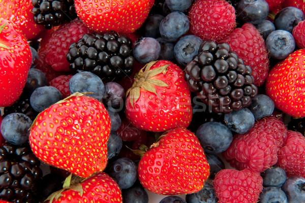 Stockfoto: Diversiteit · vers · fruit · vers · bos · vruchten · vol