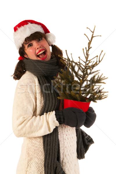 冬 少女 帽子 サンタクロース ウール セーター ストックフォト © ivonnewierink