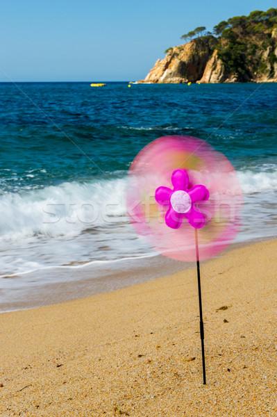 Giocattolo vento mill spiaggia colorato estate Foto d'archivio © ivonnewierink