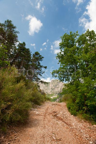 Walking path in the Haute Provence Stock photo © ivonnewierink