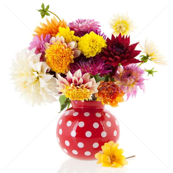 букет красный ваза изолированный белый фон Сток-фото © ivonnewierink
