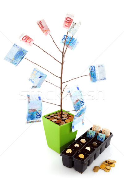 Making money Stock photo © ivonnewierink
