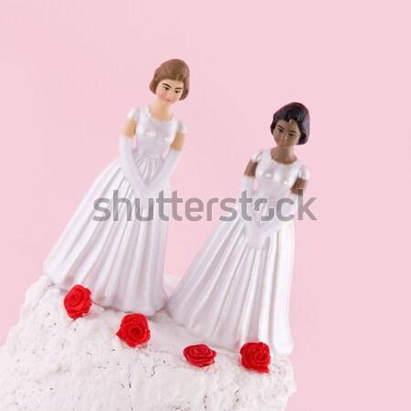 Lesbiche wedding giorno due spose donna Foto d'archivio © ivonnewierink
