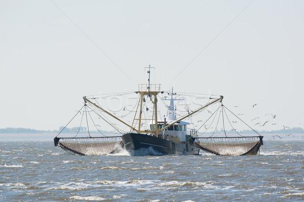 fishing boat on Dutch wadden sea Stock photo © ivonnewierink