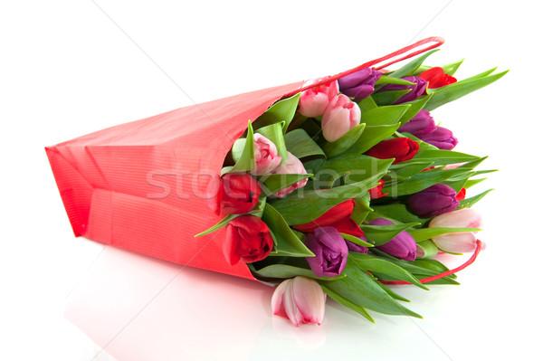 Stockfoto: Kleurrijk · tulpen · roze · paars · Rood · bloemen