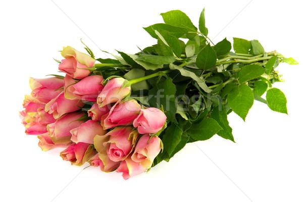 Buquê rosa rosas isolado branco flores Foto stock © ivonnewierink