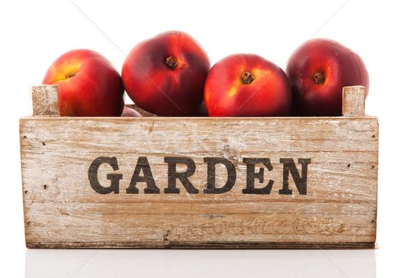 Láda fából készült kert izolált fehér gyümölcs Stock fotó © ivonnewierink