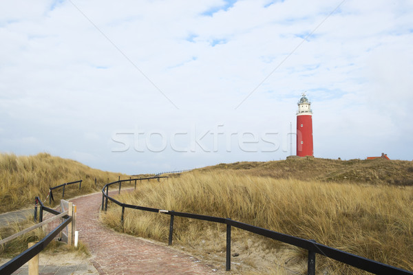 Path to lighthouses Stock photo © ivonnewierink