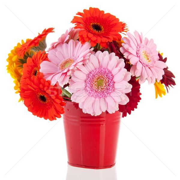 Bouquet Gerber flowers Stock photo © ivonnewierink