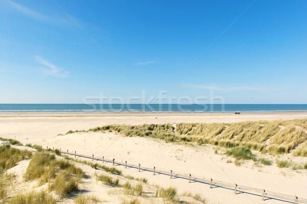 побережье пути забор природы морем лет Сток-фото © ivonnewierink