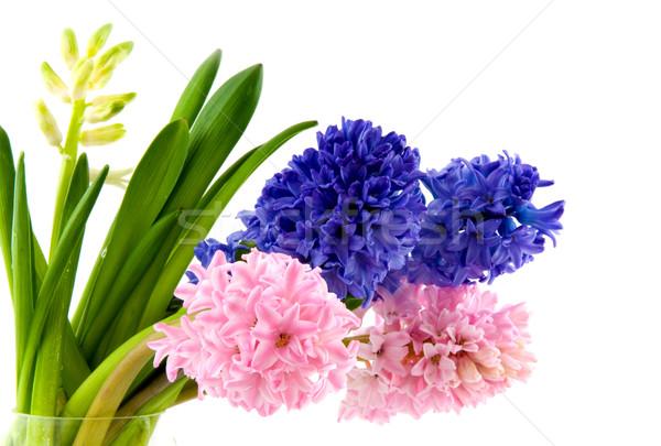 カラフル ガラス 花瓶 春 青 ストックフォト © ivonnewierink