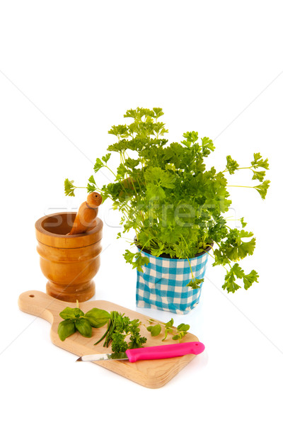 Cutting board with fresh herbs Stock photo © ivonnewierink