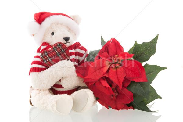 Tener aislado blanco hecho a mano relleno Navidad Foto stock © ivonnewierink