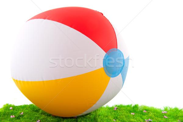 beach ball in the grass Stock photo © ivonnewierink