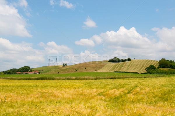 Rolniczy krajobraz Francja francuski trawy lata Zdjęcia stock © ivonnewierink