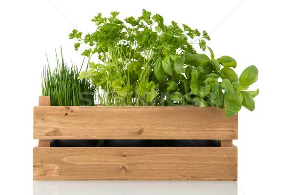 Kitchen herbs in wooden crate Stock photo © ivonnewierink