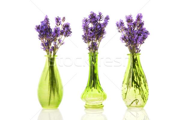 Tre lavanda verde fiori vetro sfondo Foto d'archivio © ivonnewierink