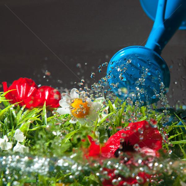 Fleurs coloré bleu peuvent métal Photo stock © ivonnewierink