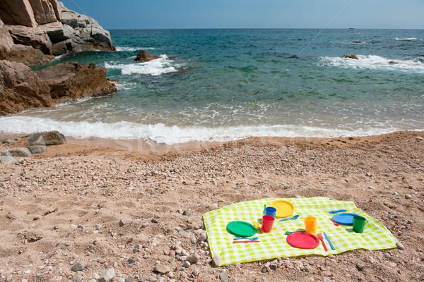 picnic at the beach Stock photo © ivonnewierink