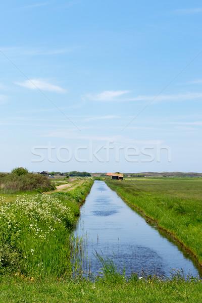 Landscape Dutch wadden island Texel Stock photo © ivonnewierink