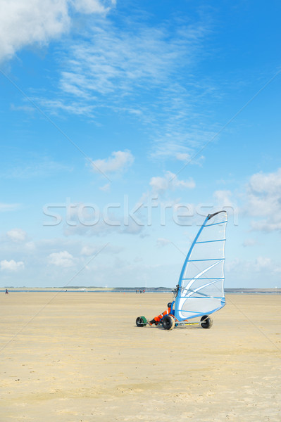 Land sailing  Stock photo © ivonnewierink