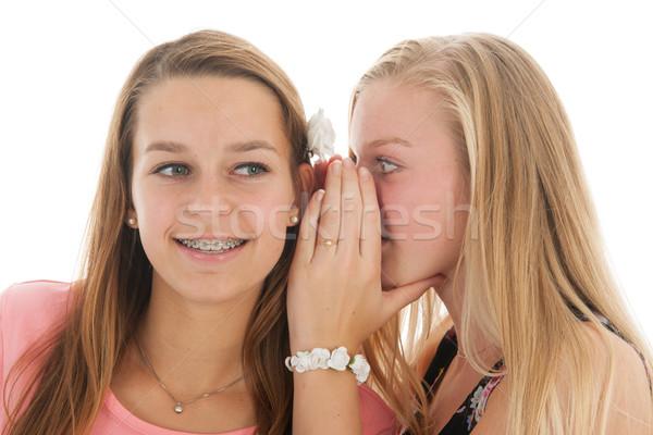 Goed nieuws teen meisjes praatjes glimlach Stockfoto © ivonnewierink