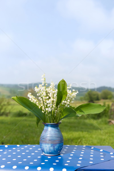 Lily of the valley in vase Stock photo © ivonnewierink