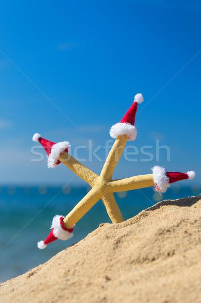 ヒトデ クリスマス 面白い ビーチ 着用 ストックフォト © ivonnewierink
