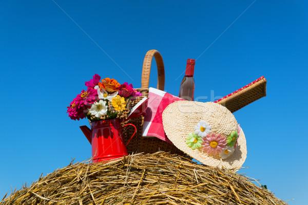 Piknik sepeti yaz şapka tarım manzara buket Stok fotoğraf © ivonnewierink