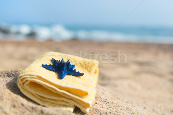Toalla estrellas de mar playa amarillo azul viaje Foto stock © ivonnewierink