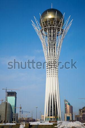 Kule simge gökyüzü çiçek şehir mavi Stok fotoğraf © ivz