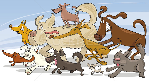 Running dogs Stock photo © izakowski