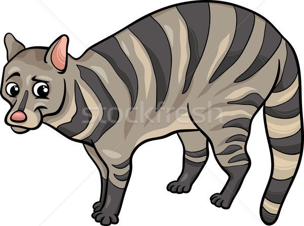 civet animal cartoon illustration Stock photo © izakowski