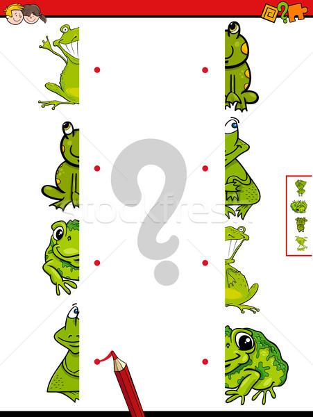 match halves of frogs cartoon game Stock photo © izakowski