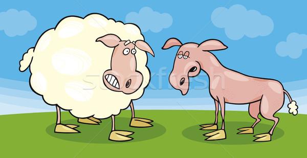 Frightened sheep and shaved one Stock photo © izakowski