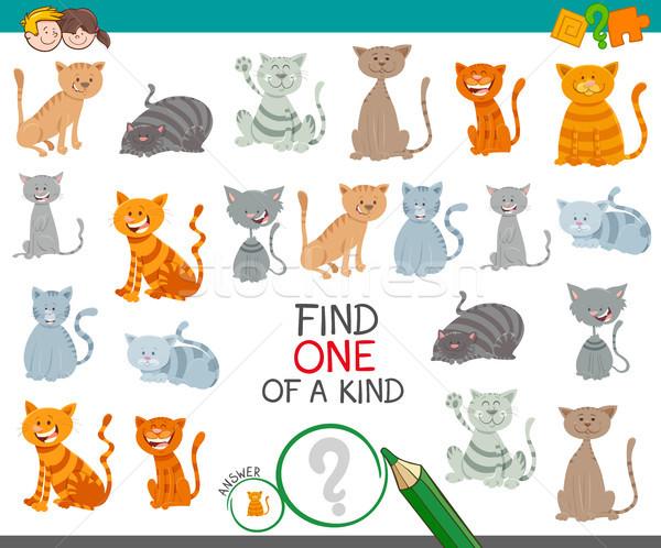 find one cat of a kind game for children Stock photo © izakowski