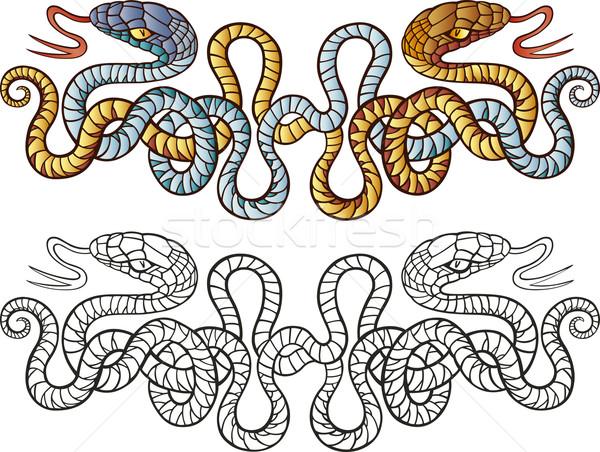 Snakes tattoo design Stock photo © izakowski
