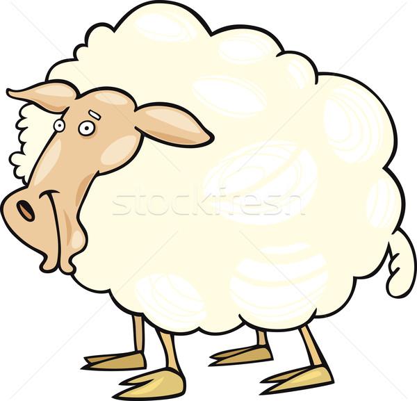 Cartoon sheep Stock photo © izakowski