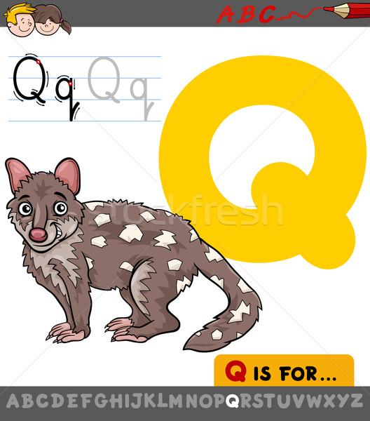 Litera Q Desen Animat Ilustrare Alfabet Animal
