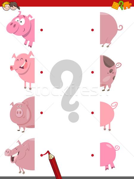 match the halves of pigs Stock photo © izakowski