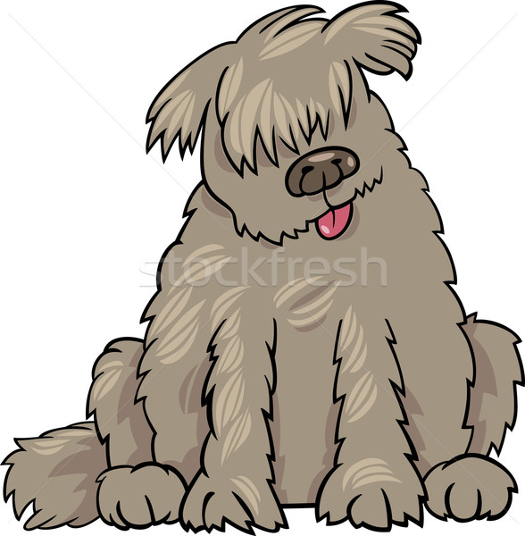newfoundland dog cartoon illustration Stock photo © izakowski