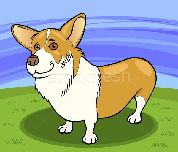 pembroke welsh corgi dog cartoon illustration Stock photo © izakowski