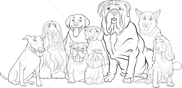 Stock photo: purebred dogs group cartoon for coloring