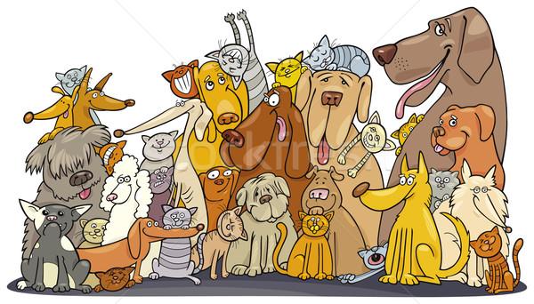 Huge group of Cats and Dogs Stock photo © izakowski