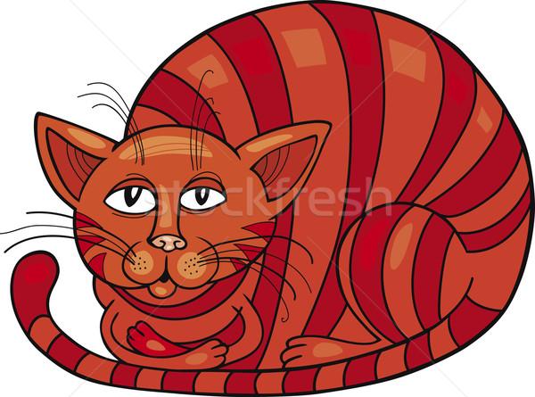 Red Cat Stock photo © izakowski
