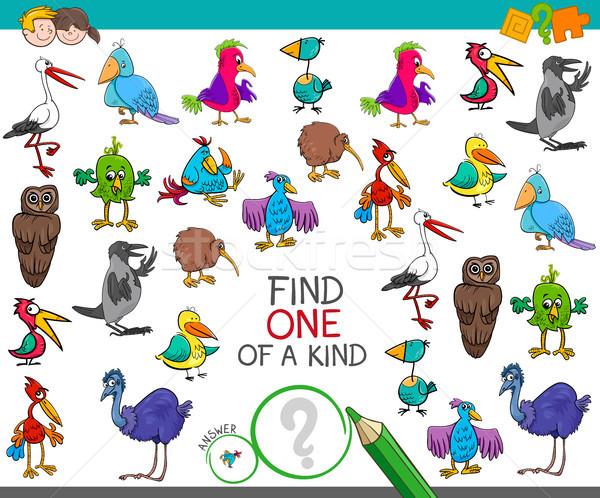 find one of a kind with birds characters Stock photo © izakowski