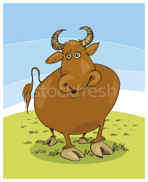 Bull Stock photo © izakowski